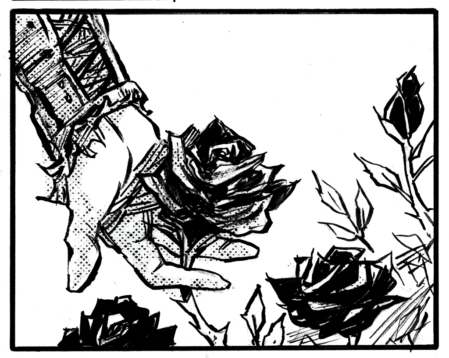 Coming up in Issue 10, the titular black roses...